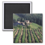 Europe, Italy, Tuscany. Scenic villa cyprus. 2 Inch Square Magnet