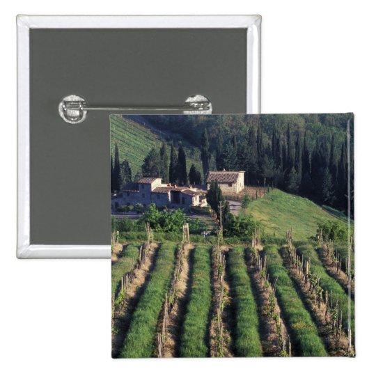 Europe, Italy, Tuscany. Scenic villa cyprus. Button