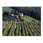 Europe, Italy, Tuscany. Scenic villa cyprus. Postcard