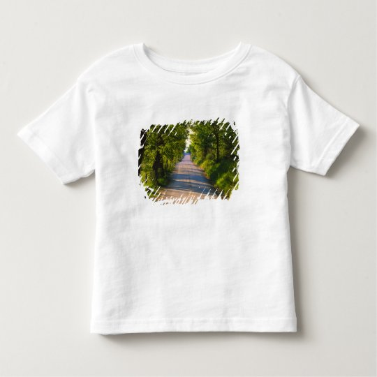 Europe, Italy, Tuscany, tree lined road Toddler T-shirt