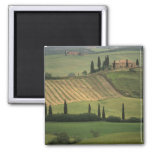 Europe, Italy, Tuscany, Val d' Orcia, Tuscan 2 Inch Square Magnet