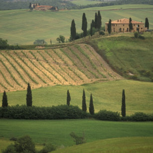 Europe Italy Tuscany Val D Orcia Tuscan Ceramic Tile