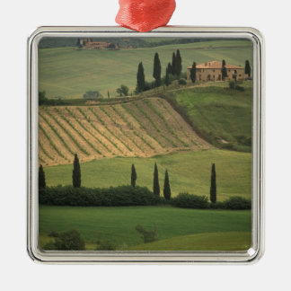 Europe Italy Tuscany Val d Orcia Tuscan Christmas Ornaments