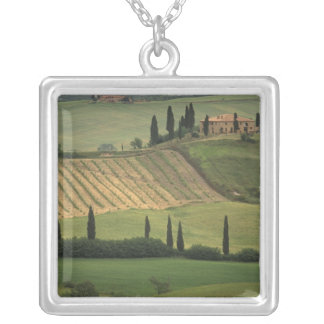 Europe, Italy, Tuscany, Val d' Orcia, Tuscan Silver Plated Necklace