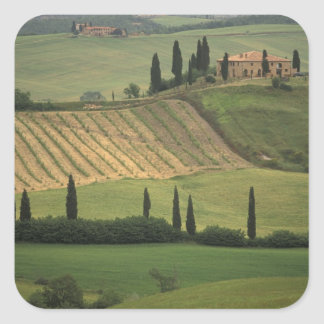 Europe, Italy, Tuscany, Val d' Orcia, Tuscan Square Sticker