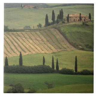Europe, Italy, Tuscany, Val d' Orcia, Tuscan Tile