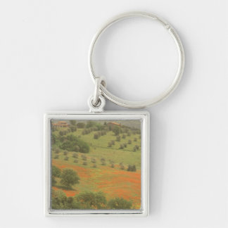 Europe, Italy, Tuscany, Val D'Orcia, Monte Keychain