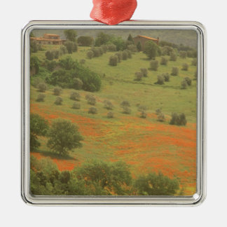 Europe, Italy, Tuscany, Val D'Orcia, Monte Metal Ornament