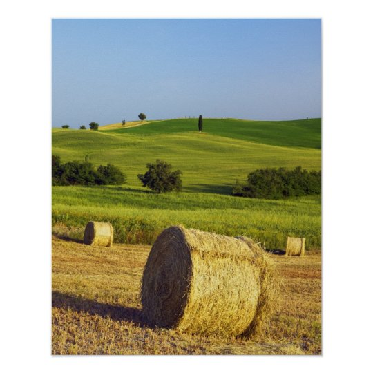 Europe, Italy, Tuscany, Val d'Orcia, Pienza - Poster