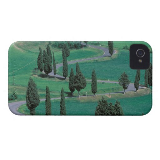 Europe, Italy, Tuscany. Winding road near Blackberry Bold Covers