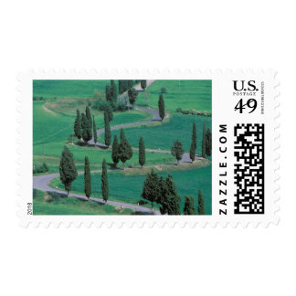Europe, Italy, Tuscany. Winding road near Postage