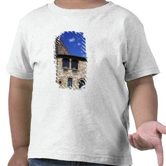 Europe, Italy, Umbria, Chianti, Montebenichi. T-shirts