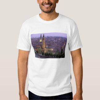 Europe, Italy, Veneto, Verona. View from Castel T Shirt