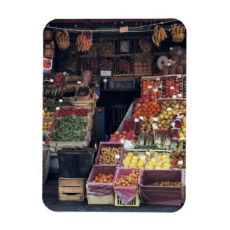 Europe, Italy, Venice area. Colorful fruits and Rectangular Photo Magnet