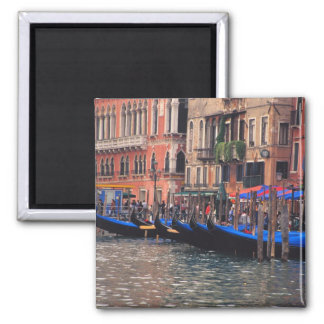 Europe, Italy, Venice, gondolas in canal Fridge Magnet