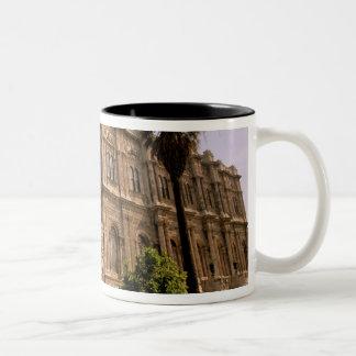 Europe, Middle East, Istanbul. The Bosphorus, Two-Tone Coffee Mug