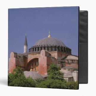 Europe, Middle East, Turkey, Istanbul. Aya Binder