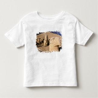 Europe, Middle East, Turkey, Nemrut Dagi Kahta 2 Toddler T-shirt