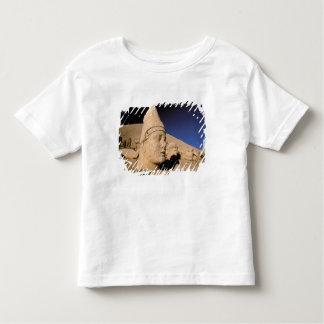 Europe, Middle East, Turkey, Nemrut Dagi Kahta T-shirt