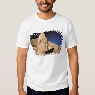 Europe, Middle East, Turkey, Nemrut Dagi Kahta Tee Shirt