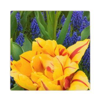 Europe, Netherlands, Lisse. Tulips Wood Coaster