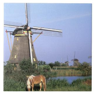 Europe, Netherlands, Zuid Holland, Kinderdijk. 2 Ceramic Tile