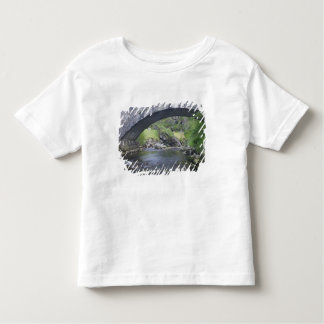 Europe, Norway. Stone Bridge enroute to Bergen Toddler T-shirt