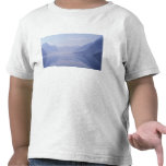 Europe, Norway. Vertical walls reflected in Tee Shirts
