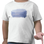 Europe, Norway. Vertical walls reflected in T Shirt