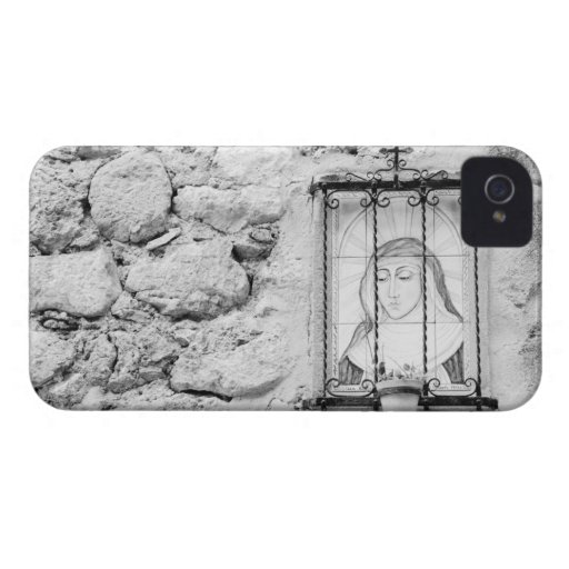 Europe, Spain, Mallorca. The Holy Wall, Blackberry Cases