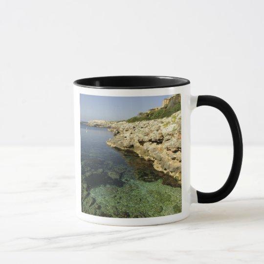 Europe, Spain, Minorca (aka Menorca), Binibeca. Mug