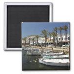 Europe, Spain, Minorca (aka Menorca). Fishing 2 Inch Square Magnet