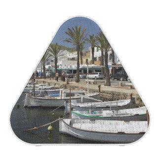 Europe, Spain, Minorca (aka Menorca). Fishing Bluetooth Speaker