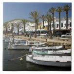 Europe, Spain, Minorca (aka Menorca). Fishing Tile