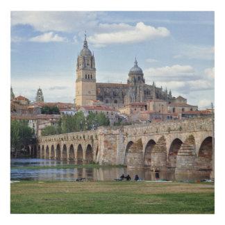 Europe, Spain, Salamanca. The Roman bridge over Wood Wall Art