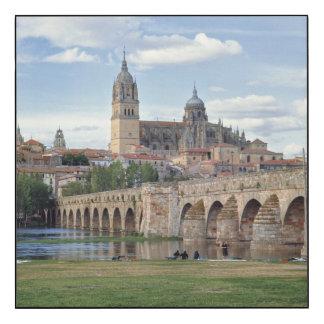 Europe, Spain, Salamanca. The Roman bridge over