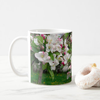 Europe spring apple tree bloom. coffee mug