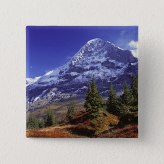 Europe, Switzerland, Eiger. Fall colors abound Pinback Button