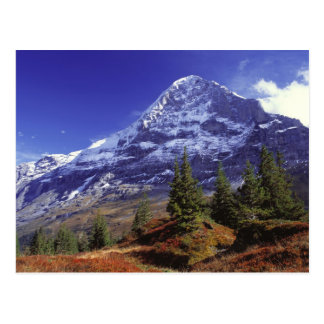 Europe, Switzerland, Eiger. Fall colors abound Postcard