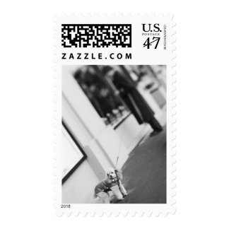 Europe, Switzerland, Lucerne. Poodle with man Postage