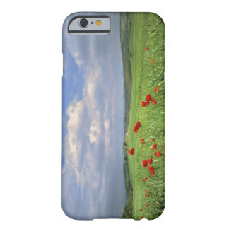 Europe, Tuscany, Poggiolo. Red poppies sway Barely There iPhone 6 Case