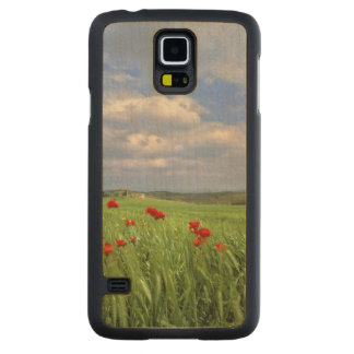 Europe, Tuscany, Poggiolo. Red poppies sway Carved Maple Galaxy S5 Slim Case