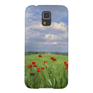 Europe, Tuscany, Poggiolo. Red poppies sway Galaxy S5 Case