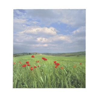 Europe, Tuscany, Poggiolo. Red poppies sway Memo Notepad