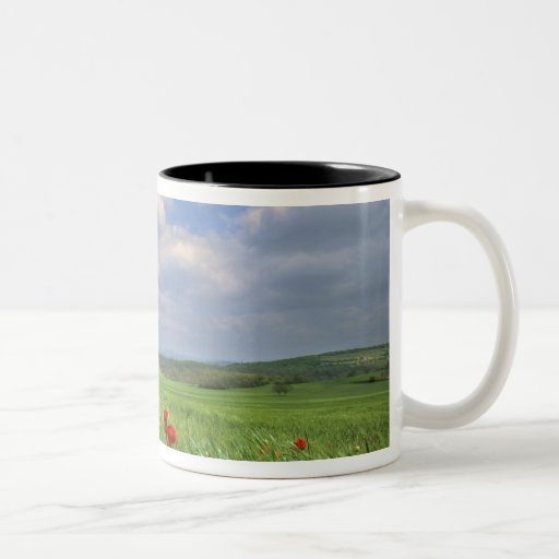 Europe, Tuscany, Poggiolo. Red poppies sway Two-Tone Coffee Mug