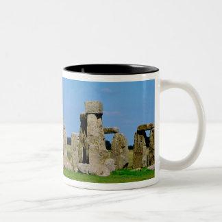 Europe, United Kingdom, England, Wiltshire, Two-Tone Coffee Mug