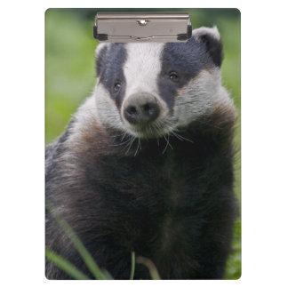 European Badger Clipboard