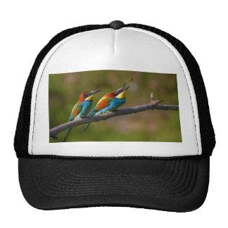 European Bee Eater Birds in Ariège France Trucker Hat