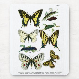 European Butterflies Plate I Mouse Pad