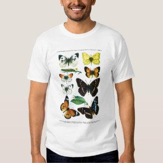 European Butterflies Plate II T-Shirt